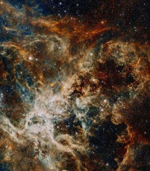 Napi horoszkóp (2021. január 12.) – A Bak kezelje lazábban a napját