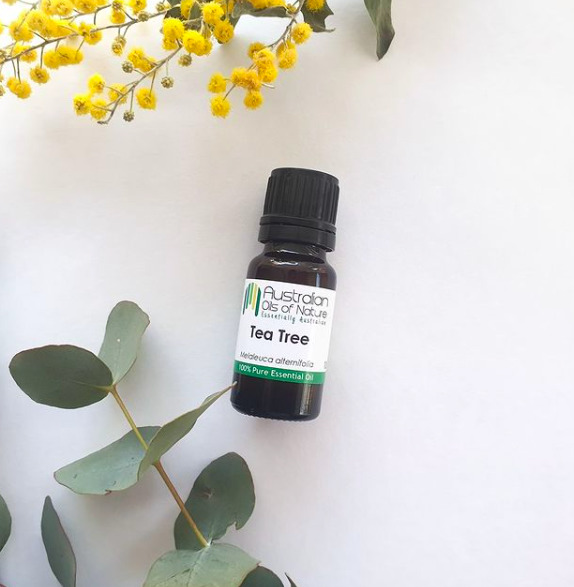 A teafaolaj használatának az előnyei, ha pattanásos a bőröd
