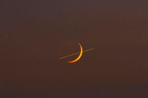 A Kos vitás helyzetbe kerül :Napi horoszkóp (2021. október 16.)